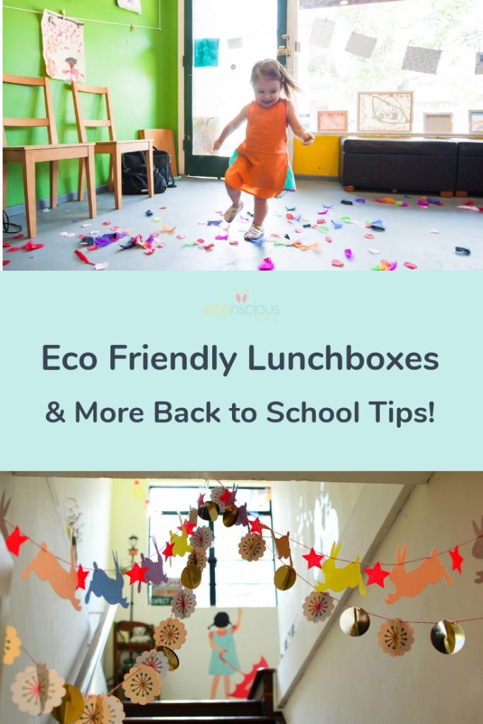 Pin Eco Friendly Lunchboxes & More Back to School Tips to Pinterest