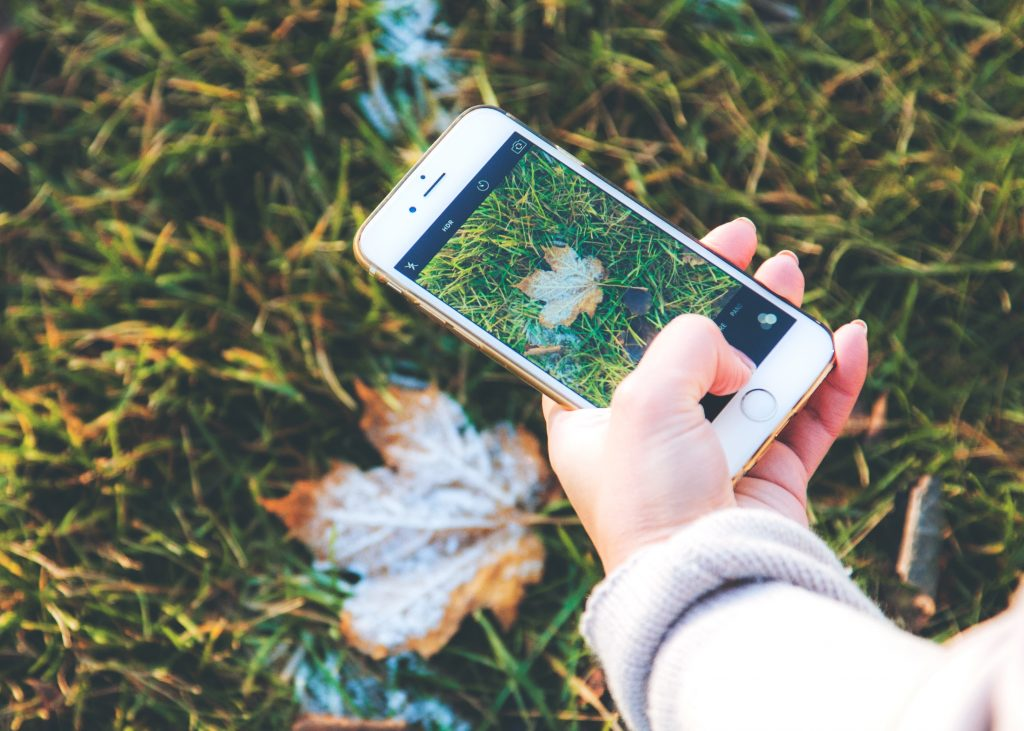 Mobile EMF radiation taking photo of nature