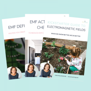 electromagnetic fields bundle