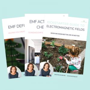 electromagnetic fields bundle