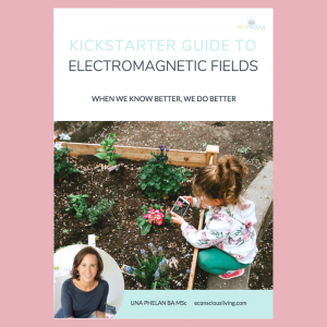 electromagnetic fields cover