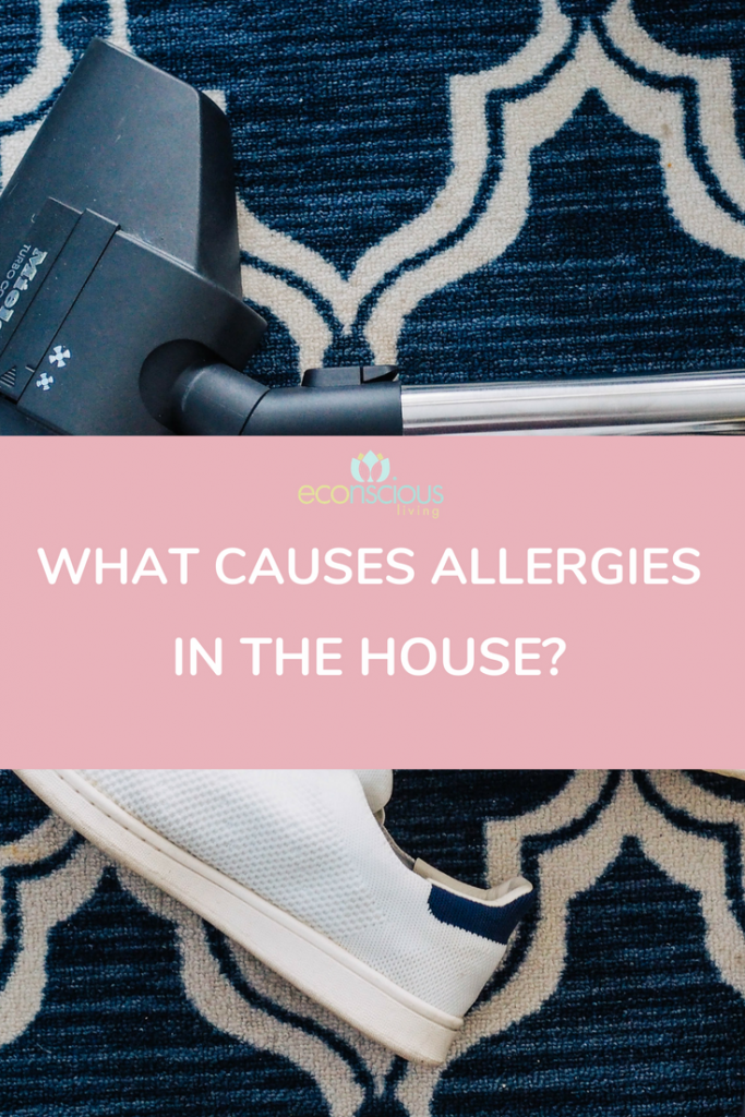what causes allergies in our home