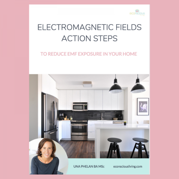 electromagnetic fields action steps