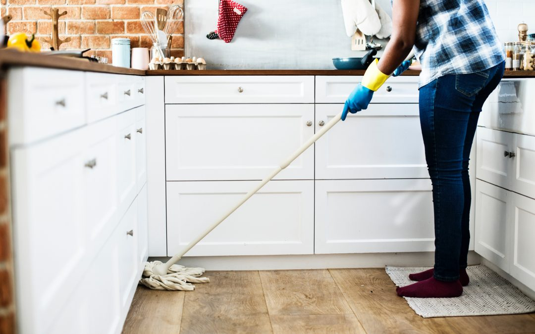 Everything You Should Know About House Dust Mites